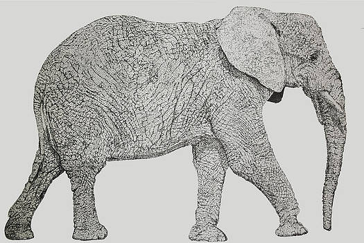 Pointillism Elephant by Terence Leano