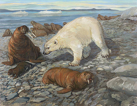 Polar Bear by ACE Coinage painting by Michael Rothman