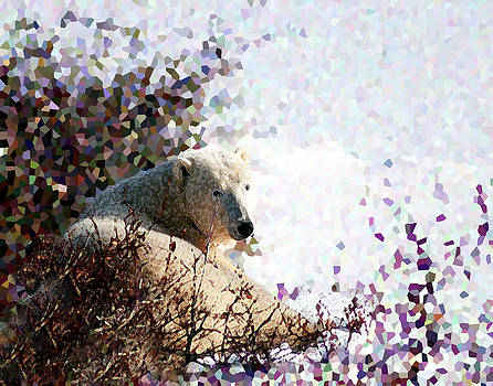 Polar Bear in Willows by Alice Ramirez