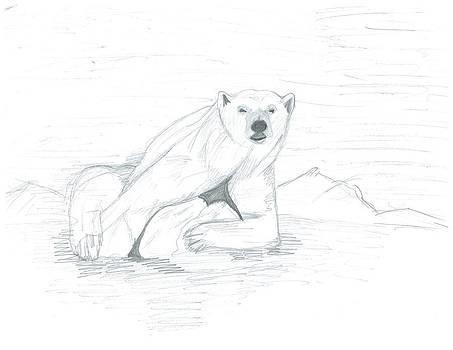 Polar Bear's Bad Luck by Emily Lambert