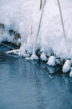 Polar Blue by Dustin Abbott