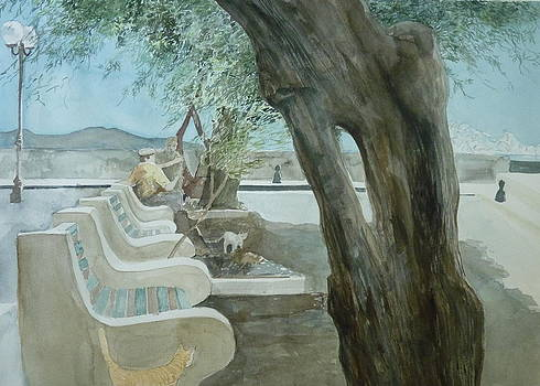 Politics Under Tamarisk Trees by Jan Eckardt Butler
