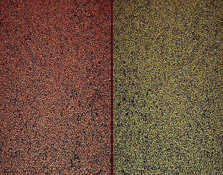 Pollock's pond by Anders Hingel