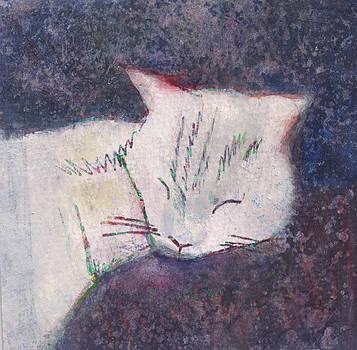 Poloma Sleep2 by James Raynor