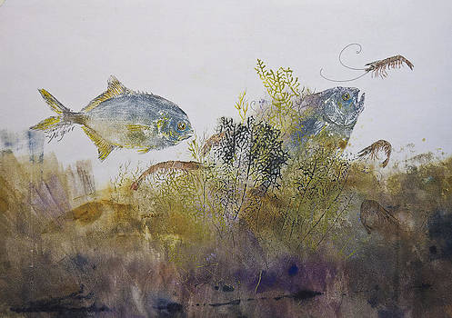 Pompano And Shrimp by Nancy Gorr