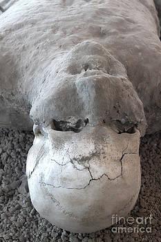 Gregory Dyer - Pompeii Ash Skeleton