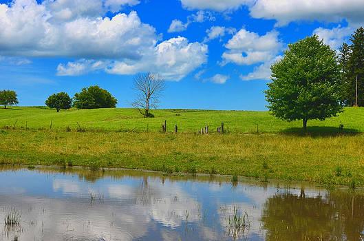Pond 1 by Jeffrey Platt