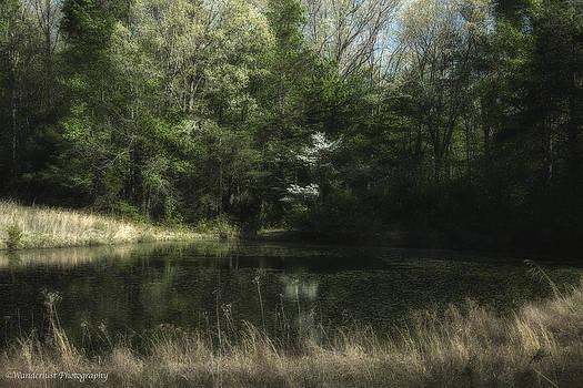 Pond of Dreams by Paul Herrmann