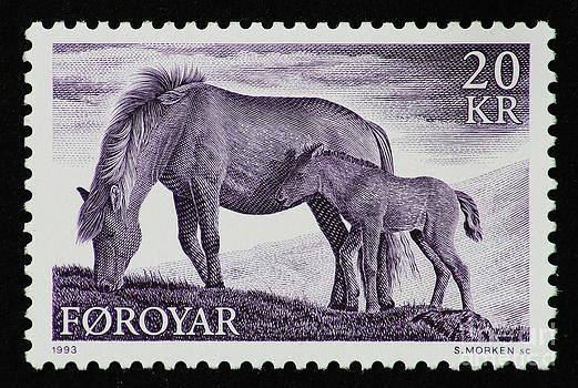 Ponies by Andy Prendy