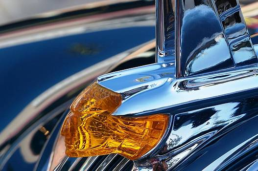 Pontiac by Julia Ivanovna Willhite