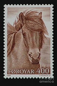 Pony by Andy Prendy