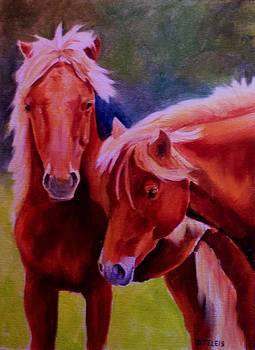 Pony Pals by Donna Teleis