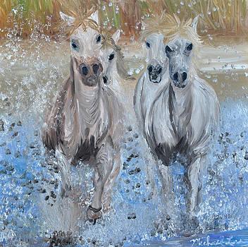 Pony Swim by Michael Lee