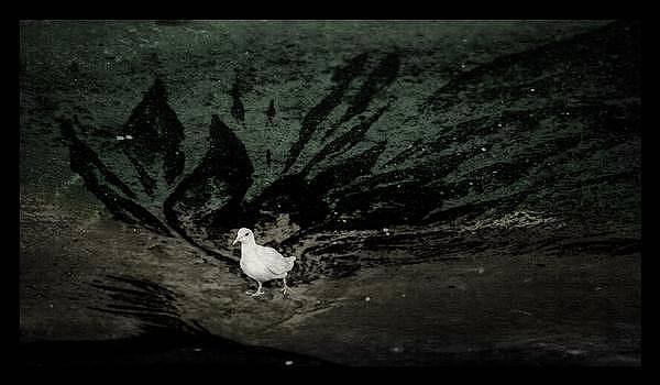 Pooph by Yeram Reyes