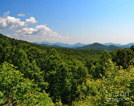 Popcorn Overlook in North Georgia by Eva Thomas