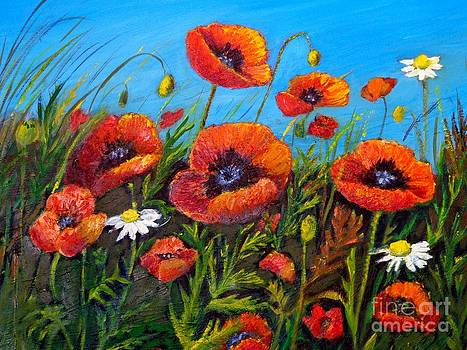 Poppies and daisies by Maureen Dowd
