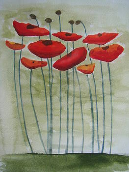 Poppies by Chip Picott