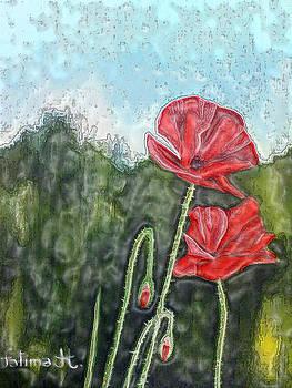 Poppies by Fatima Hameurlaine