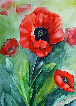 Poppies I by Georgia Pistolis