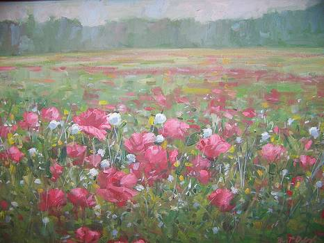 Poppies in a landscape by Bart DeCeglie