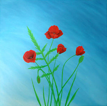 Poppies by Sven Fischer