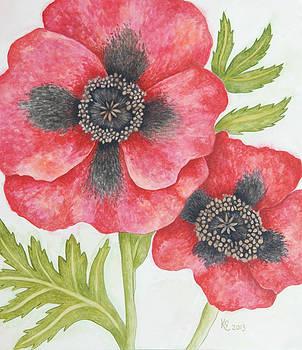 Poppy by Katharine Green