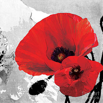 Poppy Red and Black A by Grace Pullen