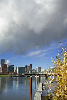 Charmian Vistaunet - Portland City Landscape