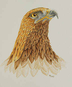 Portrait of a Golden Eagle by Katharine Green