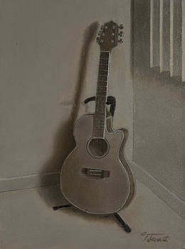 Portrait of a guitar by Todd Swart