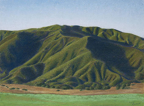 Portrait of a Mountain by Todd Swart