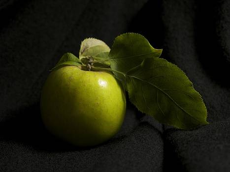 Portrait Of An Apple by Patricia McKay