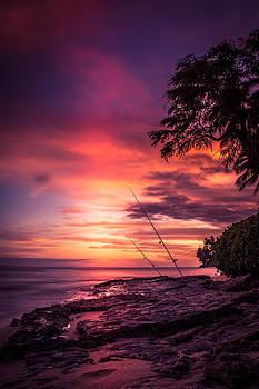 Portrait of Paradise by John Perez