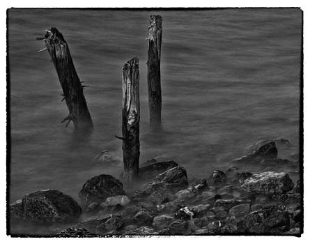 Posts In The Water by Craig Brown