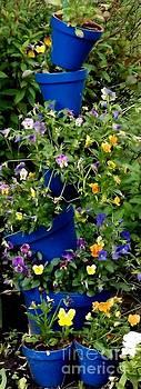 Gail Matthews - Pot Plant