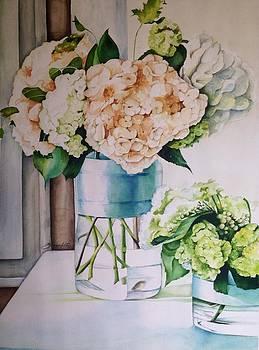 Potted Hydrangeas by Shagufta Mehdi