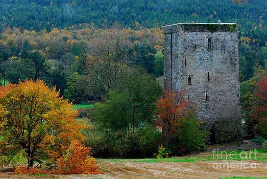Joe Cashin - Poulakerry Castle