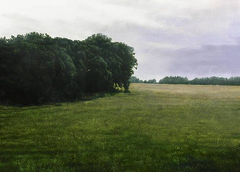 Pouzol Field 89 x116 cm by Thomas Darnell