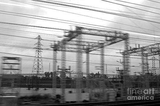 Power lines by Tony Cordoza