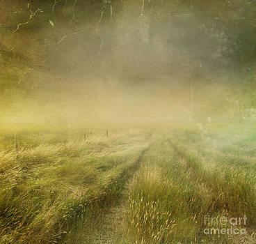 Sandra Cunningham - Prairie grasses with vintage color filters