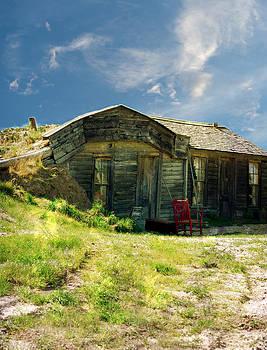 Judy Hall-Folde - Prairie Life