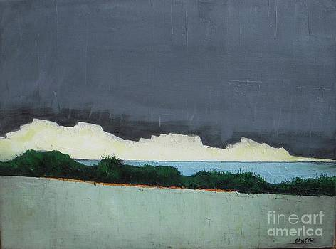 After Storm by Vesna Antic