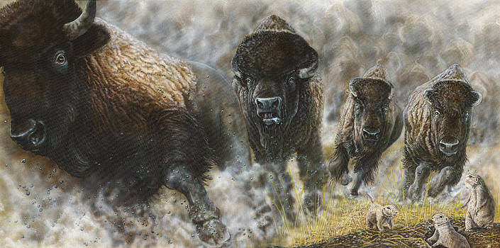 Prairie Thunder II by Wayne Pruse