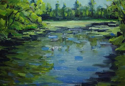 Pratt Farm Conservation Area Pond by James Reynolds