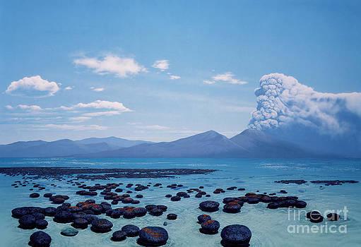 Chase Studio - Precambrian Stromatolites
