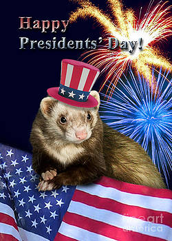 Jeanette K - Presidents Day Ferret