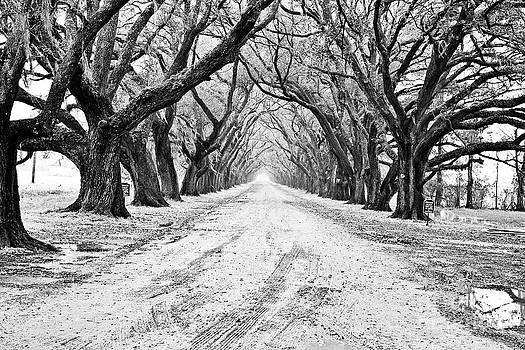 Scott Pellegrin - Private Road