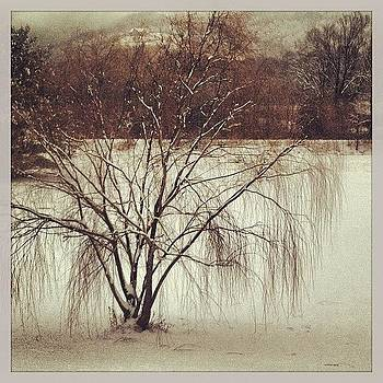 #projectlife365  #photodaily #ohsnow by Cheryl Fallon