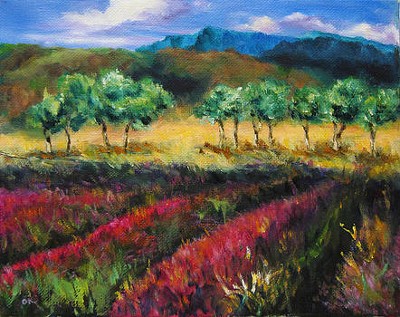 Provence In Summer by Diane Kraudelt