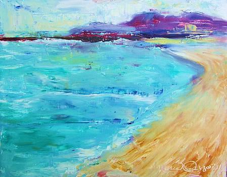 Provincetown Rocky Beach by Maria Milazzo